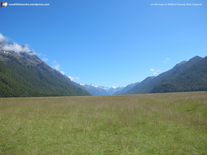 2015-03 3 On the way to milford sound